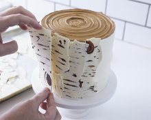birch tree cake for tu bshevat