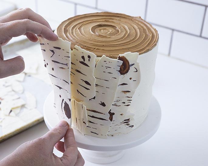 birch tree cake for tu bshevat